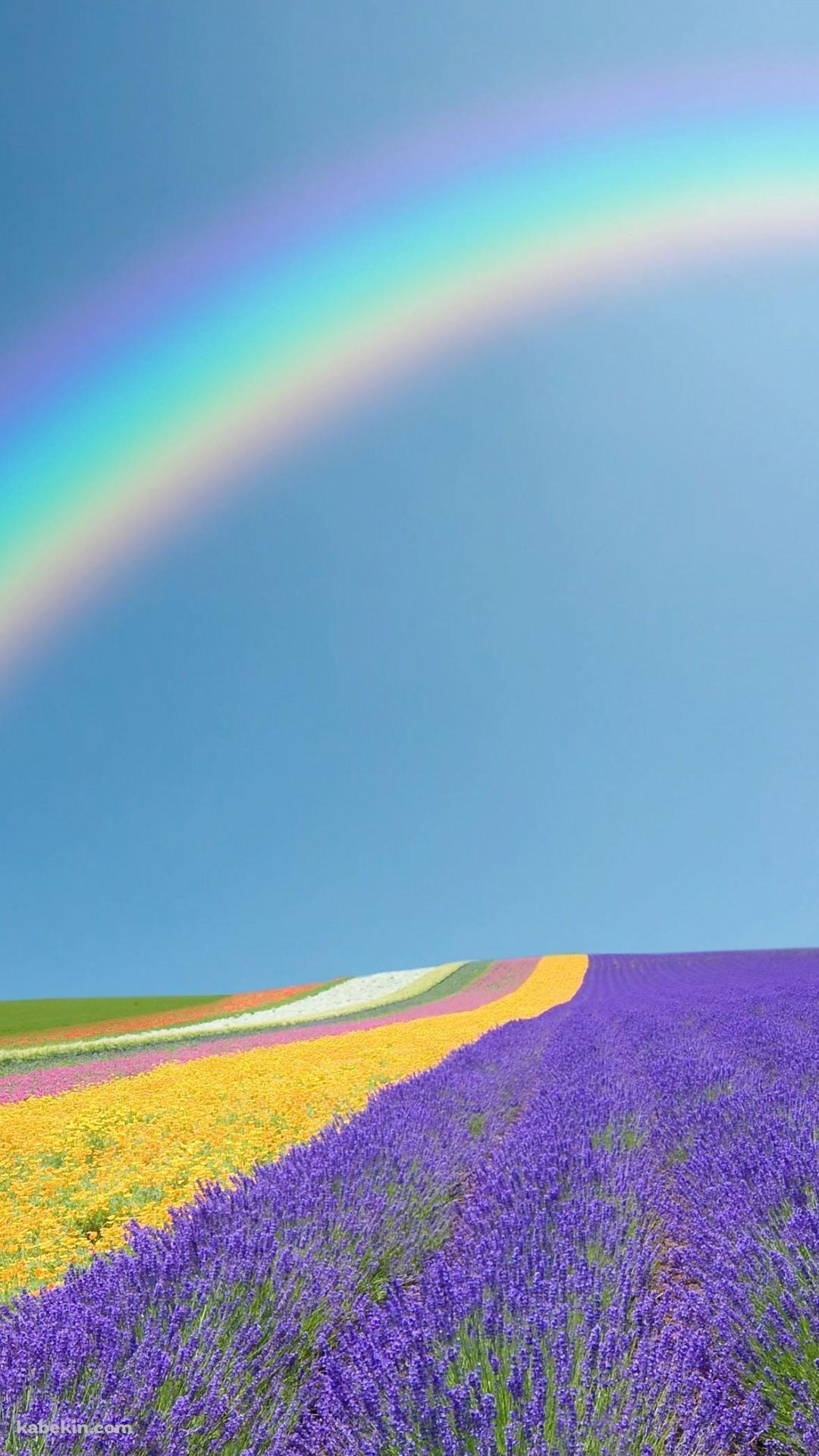 虹 紫の花 黄色の花のandroid壁紙 1080 X 1920 壁紙キングダム スマホ版
