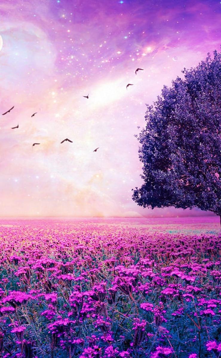 一面紫の美麗な風景のiphone4壁紙 壁紙キングダム スマホ版