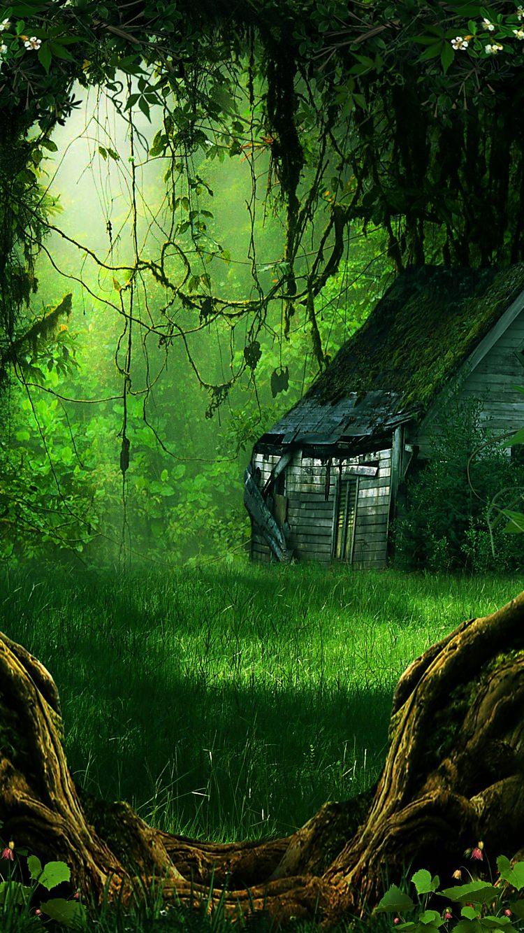 深い森の小屋のiphone7壁紙 壁紙キングダム スマホ版