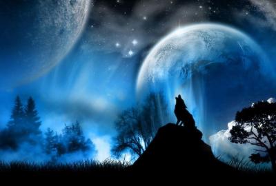 満月の中で遠吠えする狼