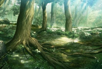 森のイラストの壁紙 壁紙キングダム Pcデスクトップ用